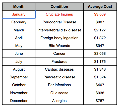most common pet insurance claim by month january cruciate