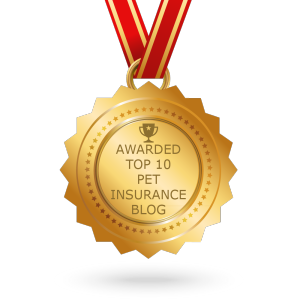 Top 10 Pet Insurance Blog