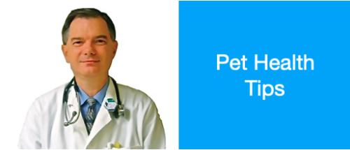 Pet Health Tips logo