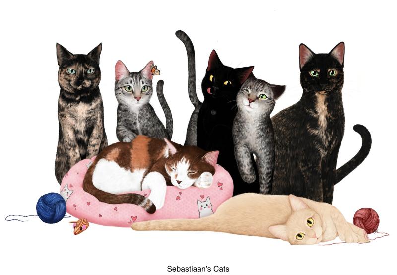Sebastiaan's Cats